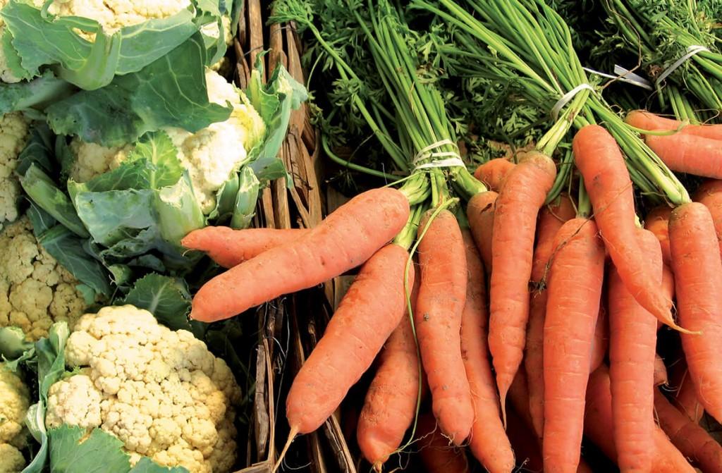 Légumes bio pour restaurant collectif