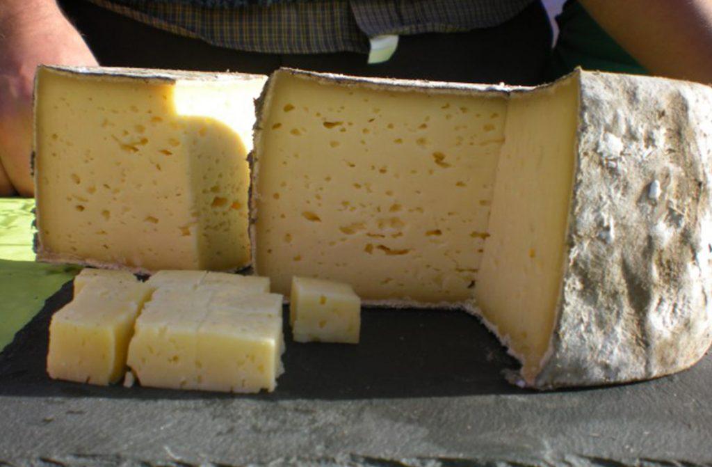 Tomme et fromage BIO pour restauration