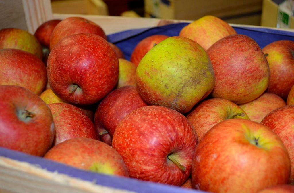 Offre de fruits bio pour restauration